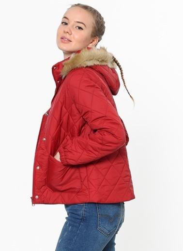 Levi's® Kapüşonlu Mont Kırmızı